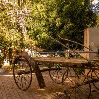 Забытая колесница :: Yana Fizazi