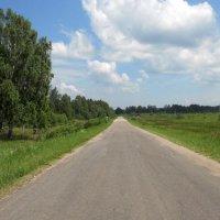 Сельская дорога :: Анатолий Антонов