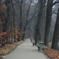 Осениий парк :: Андрей Махнык