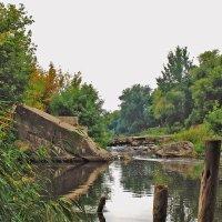 тишина у воды :: Лидия Конева