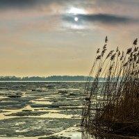 Калининградский залив, март :: Владимир Самсонов