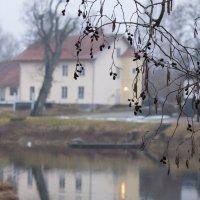туманное утро в фэрне :: liudmila drake