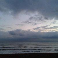 Brighton :: Oly