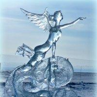Зимний ангел :: Анна S