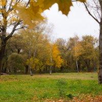 Осень... :: Vadim77755 Коркин
