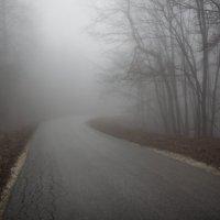 Путь в облаках :: Елена Миронова