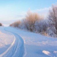 Картинка зимняя... просто нежная... :: Александр Никитинский