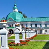На территории Преображенского собора  Свято-троицкого монастыря Александра Свирского :: Виталий Половинко