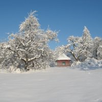 Зима :: Николай Г.