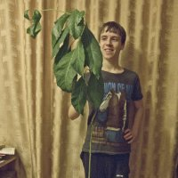 Этой авокаде самой не устоять ))) :: Александр Рябчиков
