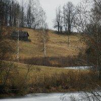 3 марта :: Юрий Бондер
