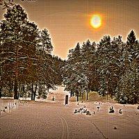 Мороз и солнце. :: Лариса Красноперова