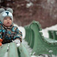 Малыш :: Александра Карепина