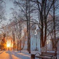 Зимнее утро в парке... :: Александр Никитинский