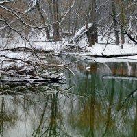 Цвет прозрачной воды. :: Edward J.Berelet