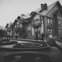 Резиденція Януковича. Межигір'я. :: Елена Крыжановская
