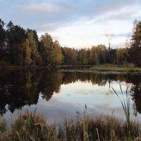 Осень :: Елена Федорова