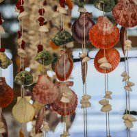 Морские сувениры :: Шамиль Канеев