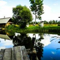 Пруд в деревне :: Артур Озол