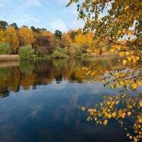 Отражения осени :: Леся Вишня