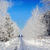 Прекрасная погода! :: Kassen Kussulbaev