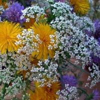 Полевые цветы :: Людмила Алексеева
