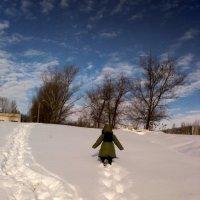 Снег :: Татьяна Полежаева