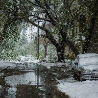 Снег :: Хмурый *