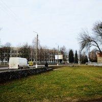 первая зеленая трава :: Михаил Bobikov