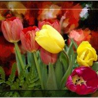 Тюльпаны для любимых :: Татьяна Губина