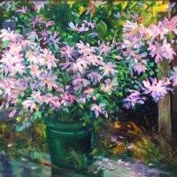 Цветы в зелёном ведре :: Наталья Золотых-Сибирская