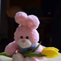 подарок маме от ребенка :: Евгений Фролов