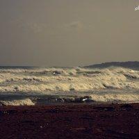 лови волну :: Александра Макиди