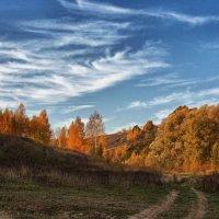 Золотые холмы :: Владимир Макаров