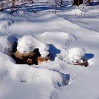 Неужели снег.... :: Жанетта Буланкина
