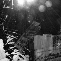 Свет свободы! Картина в Шевченковском парке в Киеве :: Ростислав