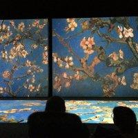 Van Gogh :: Ирина Wonderland