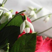Весна красна :: Mariya laimite