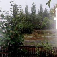 Просто летний дождь пошёл... :: Ольга Кривых