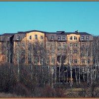 Мотель  Березовая роща :: лиана алексеева
