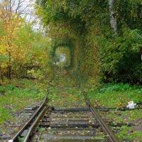 природный тоннель :: сергей ершов