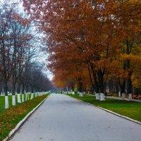 Белоусовский парк :: Иван Богданов