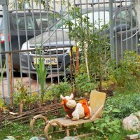 забава во дворе :: Алексей Кудрявцев