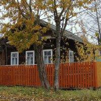 Дом под тополями :: Елена Перевозникова