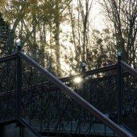 Лестница :: Strapman _