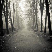 Туман :: Tarra Bazza