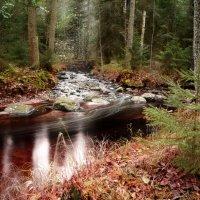 Сказка Осень :: Екатерина Тумовская