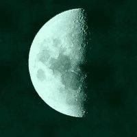 луна :: Вячеслав Завражнов