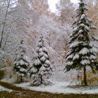 зима :: Есения Соболева