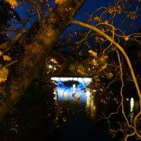 Мост :: Lina Liber